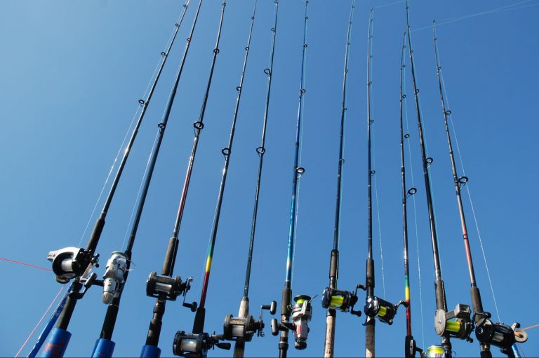 Different Types Of Fishing Rod