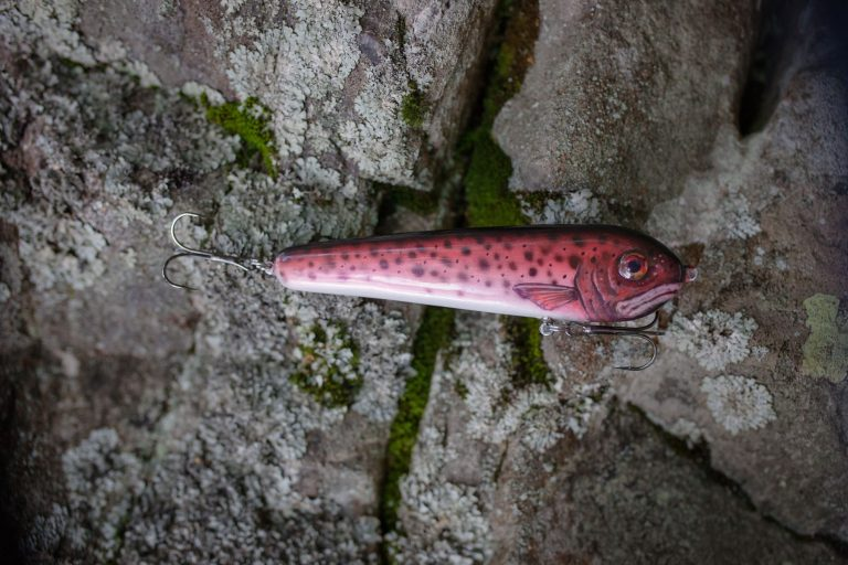 Pink Jerkbait on a Rocky Surface
