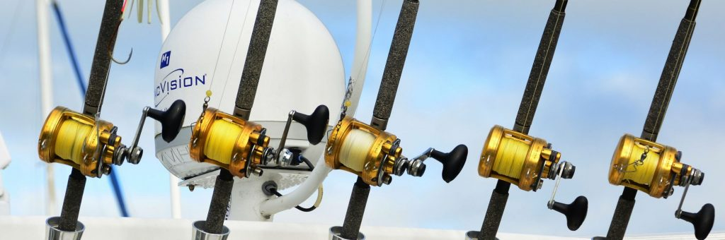 Row of Fishing Rods
