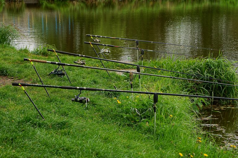 Fishing Rods with Bite Alarm