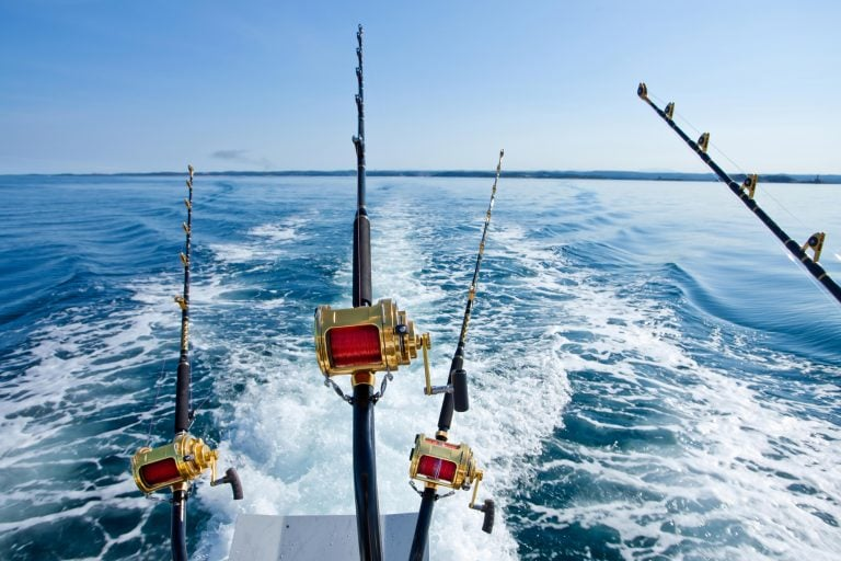 Trolling Rods at the Back of a Boat