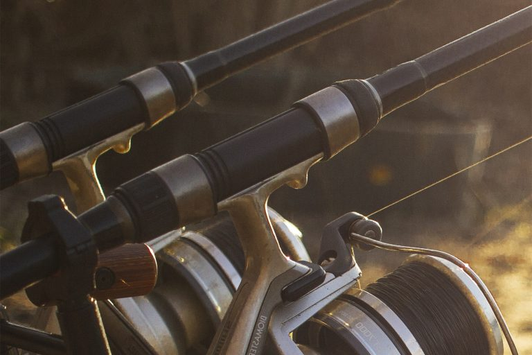 Two Fishing Rods on a Stand