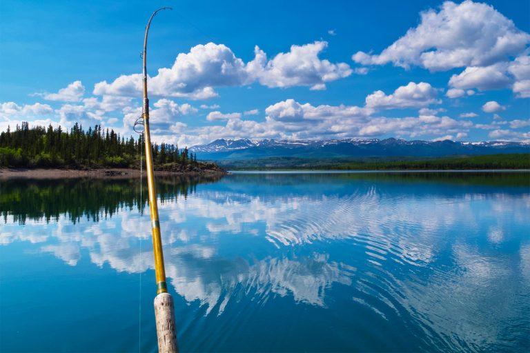 Using a Fishing Rod at a Lake
